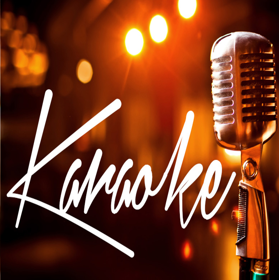 Venues Karaoke Nightcruiser Party Bus Tours And Transport