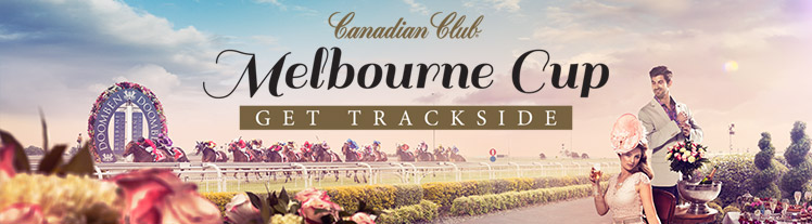 Melbourne Cup Transport with Nightcruiser Party Bus Tours Transport Brisbane