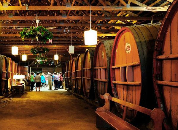 Wine Tour Hunter Valley
