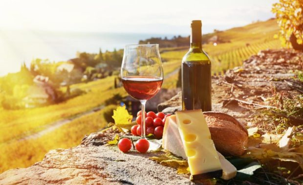 Cheap Wine Tours in the Swan Valley