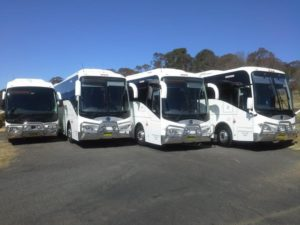Bus and Coach Hire - Nightcruiser Party Bus